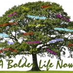 a-bolder-life-now_1080x565.jpg